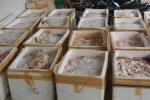 Gần 2.000 con chim cút 'bẩn' suýt lên bàn nhậu