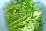Tin 100% mẫu rau muống, cá rô phi sông Nhuệ nhiễm chì gây chấn động
