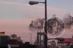 Clip: Kỳ lạ 'khuôn mặt Tổng thống Putin' hiện hữu giữa bầu trời New York