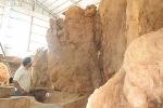 Kinh ngạc bộ rễ cây 'cổ phật' 30 tấn ở Sóc Trăng