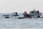 Chìm tàu trên biển Thổ Nhĩ Kỳ, 40 người di cư thiệt mạng