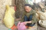 Lang y già với biệt tài chữa bệnh từ 36 cây thuốc