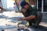 Chuyện lạ: Câu cá ngay trên nắp cống đường phố Sài Gòn
