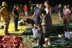 Mỹ: Nổ pháo hoa mừng quốc khánh, 28 người bị thương