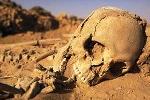 Những hình ảnh khảo cổ vô giá ở Sahara