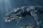 Ly kỳ cuộc chiến với 'quái vật khổng lồ' ở đảo Cát Bà