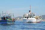 Ứng cứu 11 ngư dân gặp nạn trên biển do ảnh hưởng bão số 1