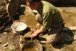 'Người rừng' Việt Nam đập gạch vào đầu thiền sư bí ẩn ở Tây Tạng