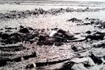 Tội ác thấu tận trời xanh của tập đoàn ác thú Pol Pot