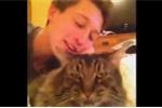 Clip: Bày tỏ tình yêu với mèo mập và cái kết thảm