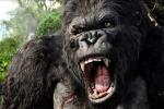 Nhà sản xuất 'Kong: Skull Island' phản ứng gay gắt với truyền thông Việt Nam