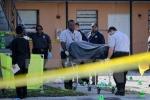 Nhiều vụ bạo lực súng đạn dịp Quốc khánh Mỹ, 7 người thiệt mạng
