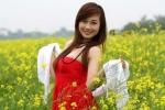 Hoa khôi ĐH Phương Đông khoe sắc giữa đồng hoa cải