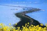 Truyền thuyết kì bí về vùng biển tự tách đôi