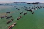 Trung Quốc lại ngang ngược đơn phương cấm đánh bắt cá ở Biển Đông