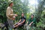 Tuyên Quang: Hổ dữ trả thù tàn khốc khiến 30 con dê mất mạng