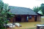 Bình Định: Áp thấp gây mưa lớn, một người bị lũ cuốn