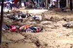 Miền Trung thiệt hại nặng sau mưa lũ