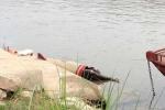 Phát hiện 1 người chết trôi trên sông Hồng