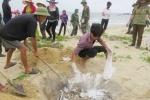 Thủ tướng yêu cầu rà soát tất cả các cơ sở xả thải ra biển