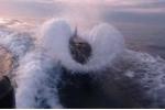 Clip: Cuộc đua nghẹt thở giữa tàu cao tốc và cá voi sát thủ