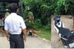 Gần trăm cảnh sát vây bắt tên cướp xe máy có súng