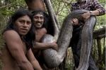 Phát hiện 'quái vật' rắn khổng lồ dài hơn 5m