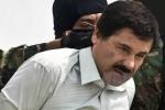 Trùm ma túy El Chapo bị tóm gọn sau 6 tháng vượt ngục