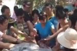Dân mạng Trung Quốc xấu hổ vì đồng hương tranh cướp đĩa hoa quả ở Việt Nam
