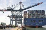 Cách chức lãnh đạo cảng biển nếu 2 lần cho container quá tải lên tàu