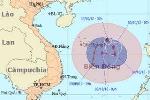 Hơn 41 nghìn tàu thuyền tránh bão số 7