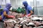 Việt Nam không bán phá giá filet cá tra, cá ba sa vào Hoa Kỳ