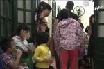 Kiến ba khoang ồ ạt tấn công người ở Hà Nội