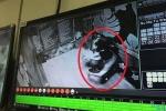 Mắc kẹt trong thang máy, đôi nam nữ nhập viện cấp cứu