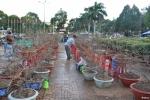 Chợ hoa vắng khách, nhà vườn Đắk Lắk đứng ngồi không yên