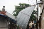 Cây đổ ở trung tâm Sài Gòn, nhiều người bị thương