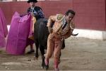 Kinh hãi khoảnh khắc bò tót nổi điên, húc thủng bụng đấu sĩ nổi tiếng
