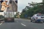 Bị tài xế container hất văng xuống đường, sức khoẻ CSGT Hà Tĩnh giờ ra sao?