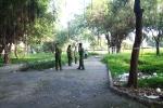 Người đàn ông chết trong tư thế treo cổ ở công viên