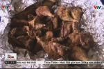 Mầm bệnh nguy hiểm khôn lường từ 'đặc sản' thịt chuột