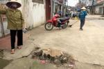 Hà Nội dẹp 'cướp' vỉa hè: Vì sao chặt hàng loạt cây xanh người dân trồng ven đường?