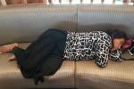 Bức ảnh ngủ vội tại sân bay của nữ bộ trưởng gây bão mạng
