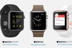 Apple Watch 'cháy hàng' ngay từ ngày đầu bán ra