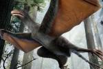 Phát hiện loài khủng long biết bay kỳ lạ ở Trung Quốc