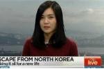 Hành trình ly kỳ bỏ trốn khỏi quê nhà của một gia đình Triều Tiên
