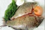 Ăn cá chép sống, sán hoành hành trong thanh quản