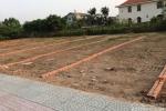 Khách hàng lùng mua dự án đất nền được tự xây