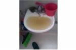 Giáo viên mầm non tố trường học dùng nước giếng bẩn nấu ăn cho trẻ