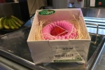 Quà Valentine: Dâu tây siêu đắt giá 500.000 đồng/quả