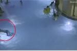 Bé trai 5 tuổi vùng vẫy xin cứu giữa bể bơi đông người nhưng không ai biết